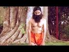 Jagadguru Adi Sankara Scenes || L B Sriram Hilarious Comedy Scene (Shavasana Yoga)