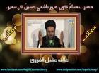 Hazrat Muslim Kon? Gayyur Hashmi, Imam Hussain (a.s) Kay Safeer - Allama Aqeel-ul-Gharvi