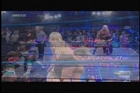 Angelina Love, Gail Kim, Brittany and ODB Knockouts Match