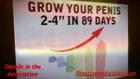 Japanese Penis Length